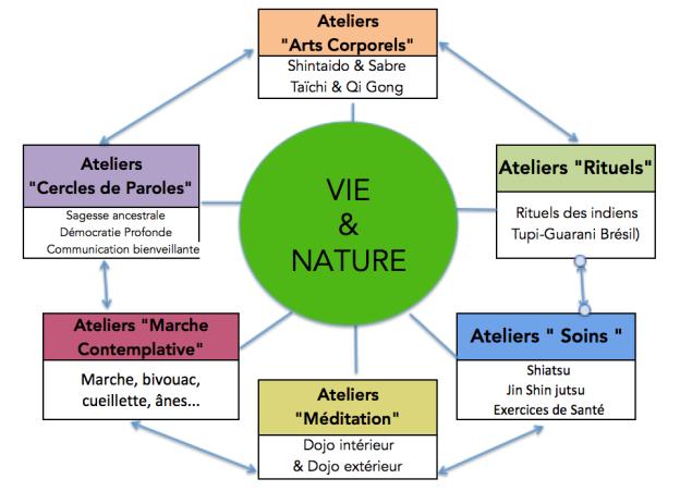 Organigramme Ateliers de Vie & Nature